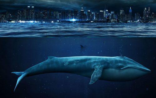 Синий кит на фоне мегаполиса
