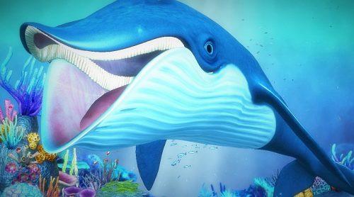 Синий кит весёлый