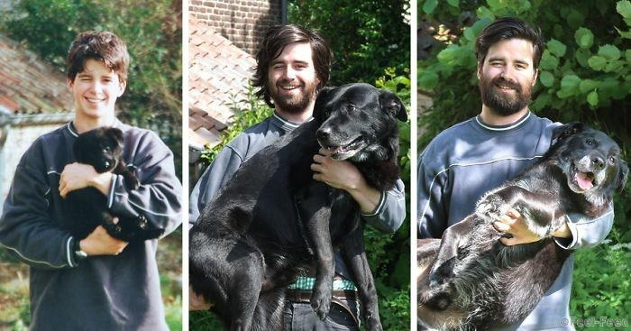 Сколько лет собаке по человеческим меркам: стадии жизни, таблица