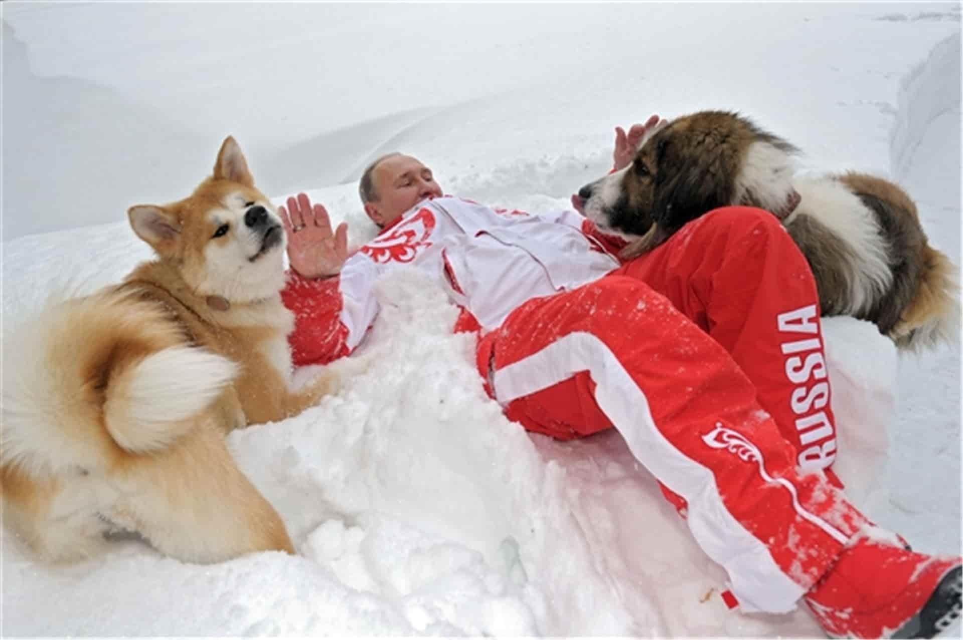 Путин на снегу со своими собаками