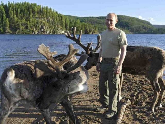 Путин в компании оленей