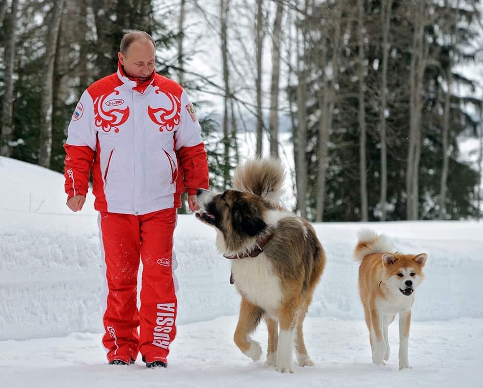 Путин идет с двумя своими собаками