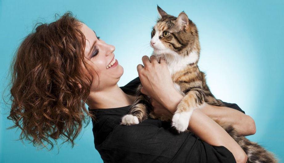 сколько живут кошки в домашних услвоиях