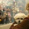 Собака боится салюта, что делать? Советы кинолога