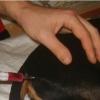 Как делать укол собаке внутримышечно – правила проведения процедуры