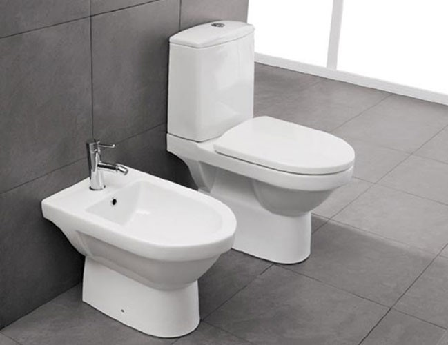 What if I'm a Toilet. Test: How Much are You Toilet