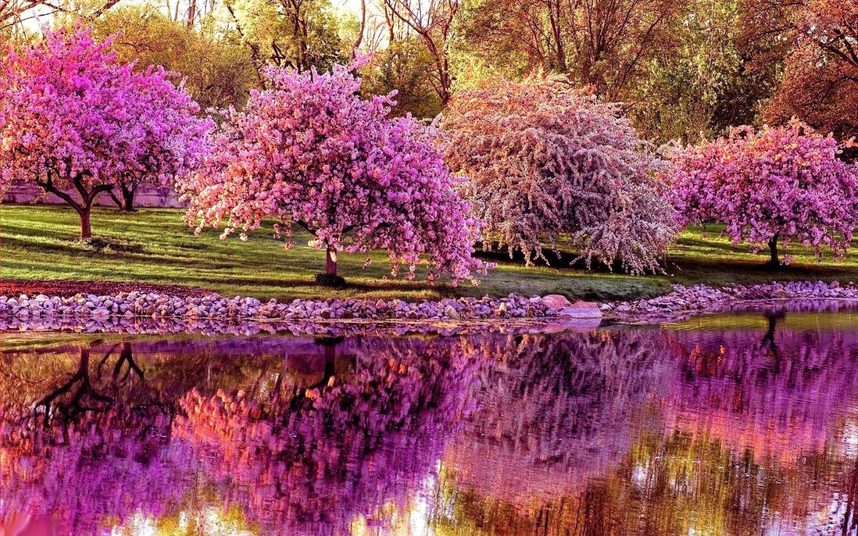 при картинки весна в очень высоком разрешении настоящее время многофункциональные